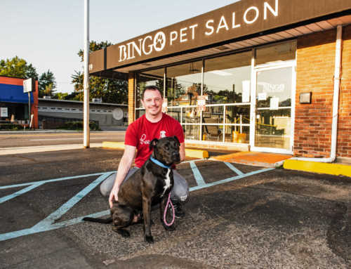 From COVID-19 to Black Lives Matter, How Bingo Pet Salon is Navigating 2020 By Ellen Shanna Knoppow