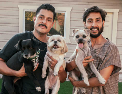 The Pet Project That Soothed COVID Isolation For Queer Animal Lovers